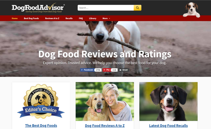 Affiliate Review Site Example for Affiliate Marketing