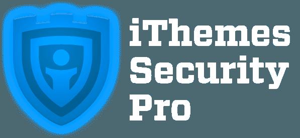 Essential Plugin for Wordpress Security